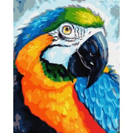 Картина по номерам Красочный попугай  GX33153, Rainbow Art