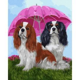 Собачки под зонтом