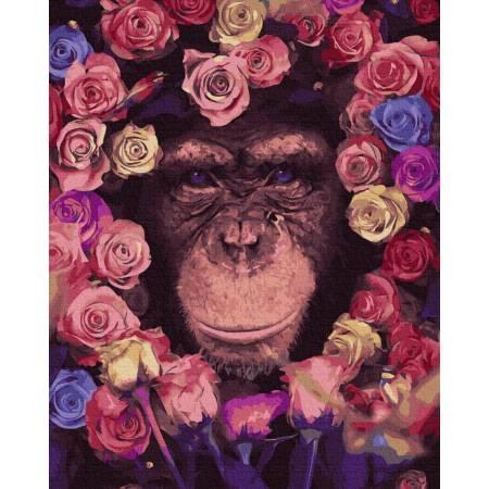 Картина по номерам Шимпанзе GX36041, Rainbow Art