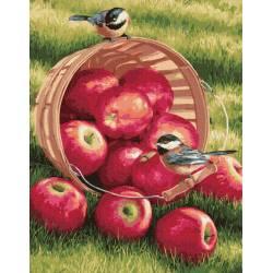 Яблоки для птичек