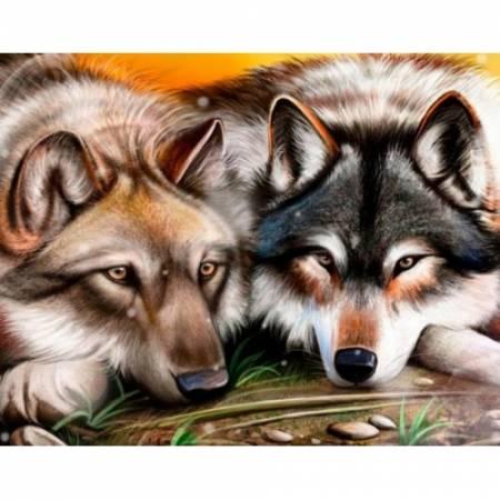 Картина по номерам Волчья любовь   TN893, Rainbow Art