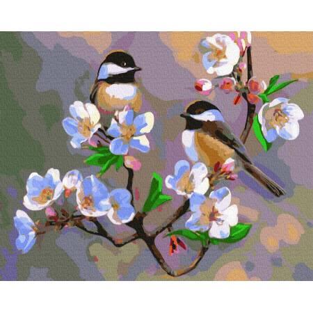Картина по номерам Весенние синички  GX31723, Rainbow Art