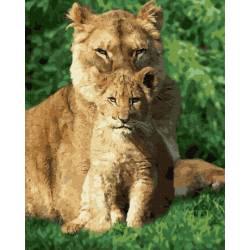 Львенок по защитой