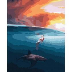 На одной волне с акулой
