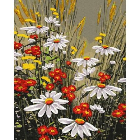 Картина по номерам Красота полевых цветов  GX39323, Rainbow Art