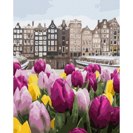 Цветы из Амстердама