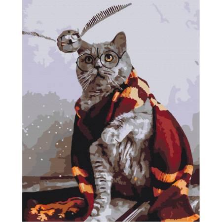 Котик ловец снитча