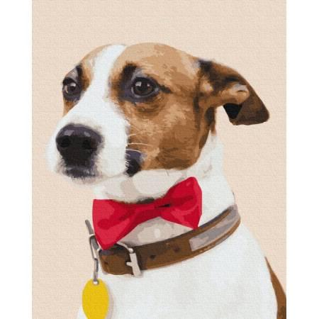 Картина по номерам Собака чемпион  GX38501, Rainbow Art
