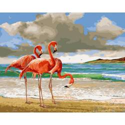 Фламинго на берегу