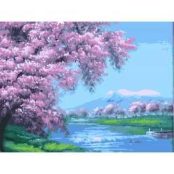 Сакура над рекой