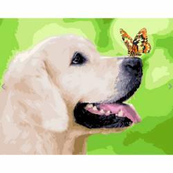 Лабрадор и бабочка