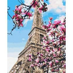 Цветение магнолий в Париже