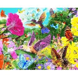 Колибри и бабочки
