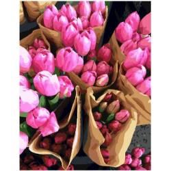 Тюльпаны из Голландии