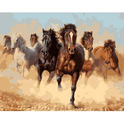 Стая лошадей