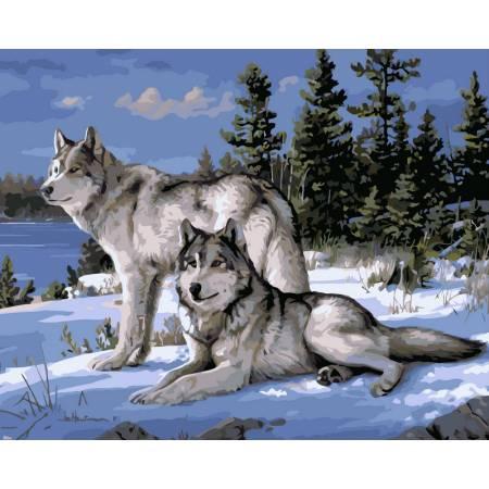 Картина по номерам «Волки на снегу», модель vp236