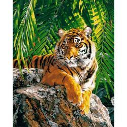 Суматранская тигрица
