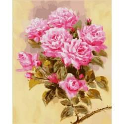Розовая ветвь