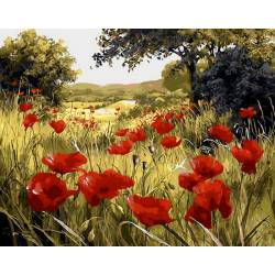 Маковая поляна, цветной холст