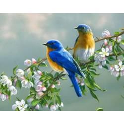 Птички на яблоне, цветной холст