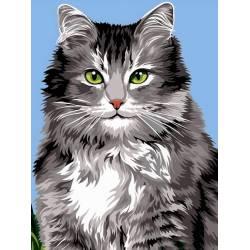 Длинношерстная кошка