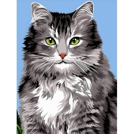 Картина по номерам Длинношерстная кошка VK237, Babylon
