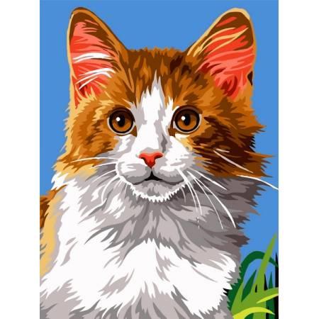 Картина по номерам Домашний кот VK238, Babylon