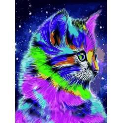 Радужный котенок