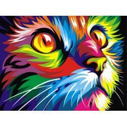Разноцветный кот