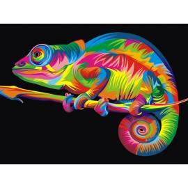 Разноцветный хамелеон