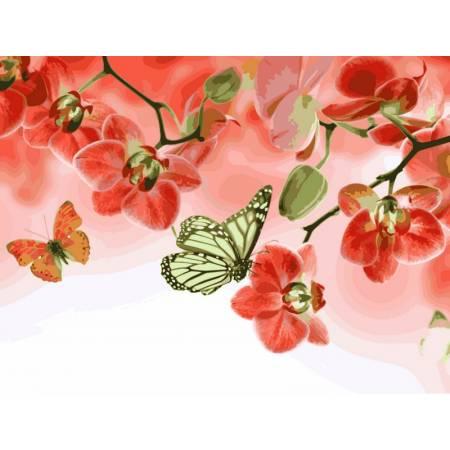 Картина по номерам «Красные орхидеи», модель VK013