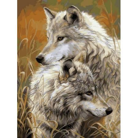 Картина по номерам «Степные волки», модель VK034