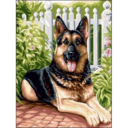 Картина по номерам «Верный пёс», модель VK108