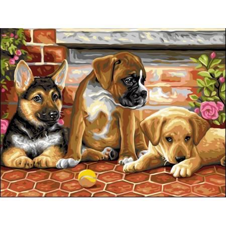 Картина по номерам Милые щенки VK111, Babylon