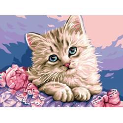 Нежный котик