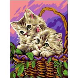 Котики в корзинке