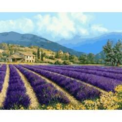 Прованский пейзаж