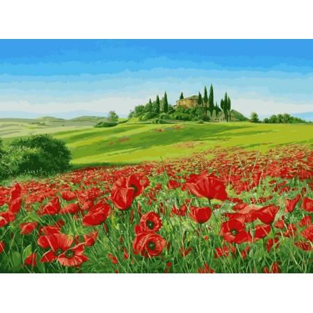 Картина по номерам «Красное поле 40х50», модель VP541