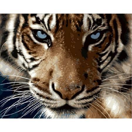 Картина по номерам Взгляд тигра Q2082, Mariposa
