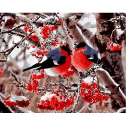 Красочные снегири