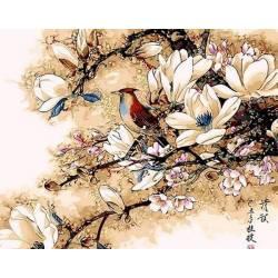 Королек птичка певчая
