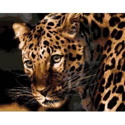 Настороженный леопард
