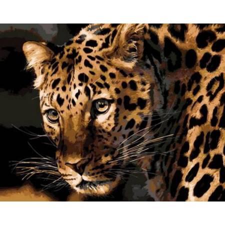 Картина по номерам Настороженный леопард Q694, Mariposa