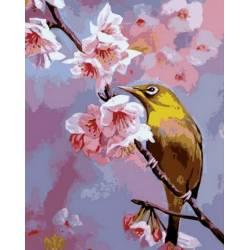 Колибри на ветке