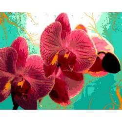 Яркая орхидея