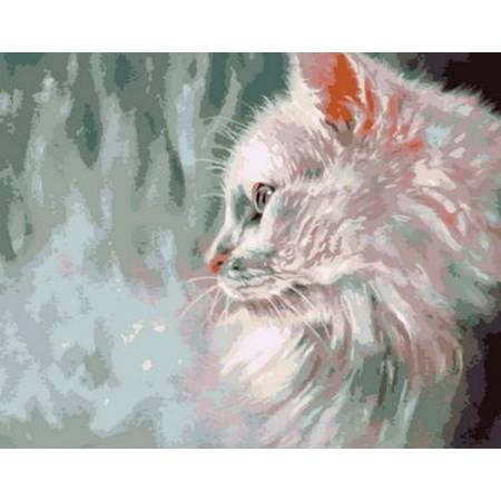 Картина по номерам Пушистый белый кот Q785, Mariposa