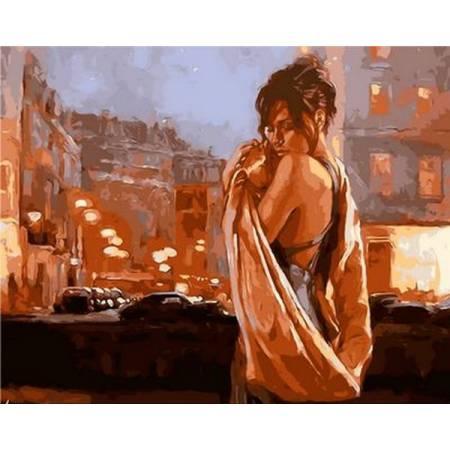 Картина по номерам В объятиях ночного города Q914, Mariposa