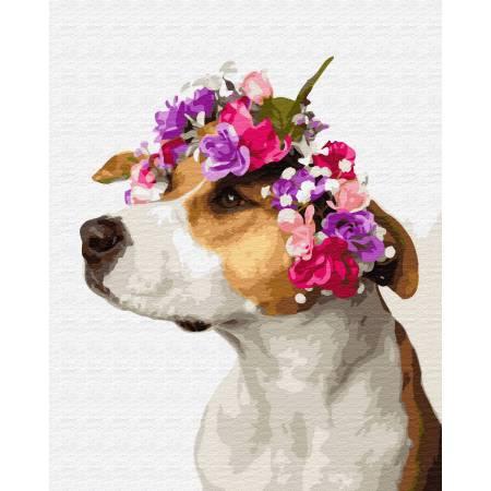 Картина по номерам Собачка в веночке GX34809, Rainbow Art