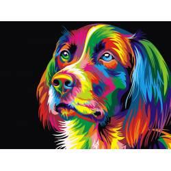 Радужная собака