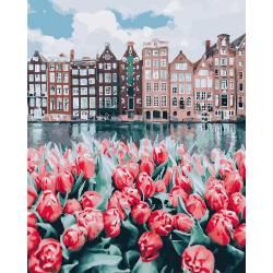 Тюльпаны Амстердама
